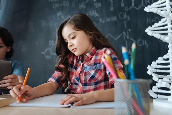 子どもの教育・受験で悩む原因や理由とは